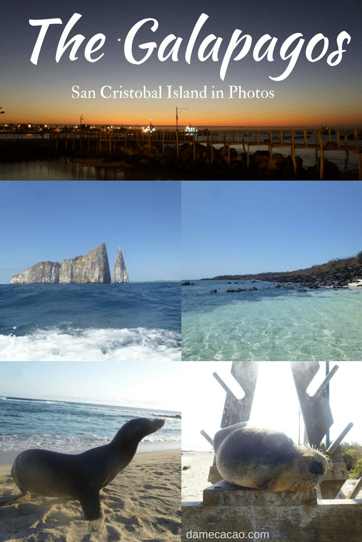 23 Photos of San Cristobal: Galapagos Islands in Just 5 Days
