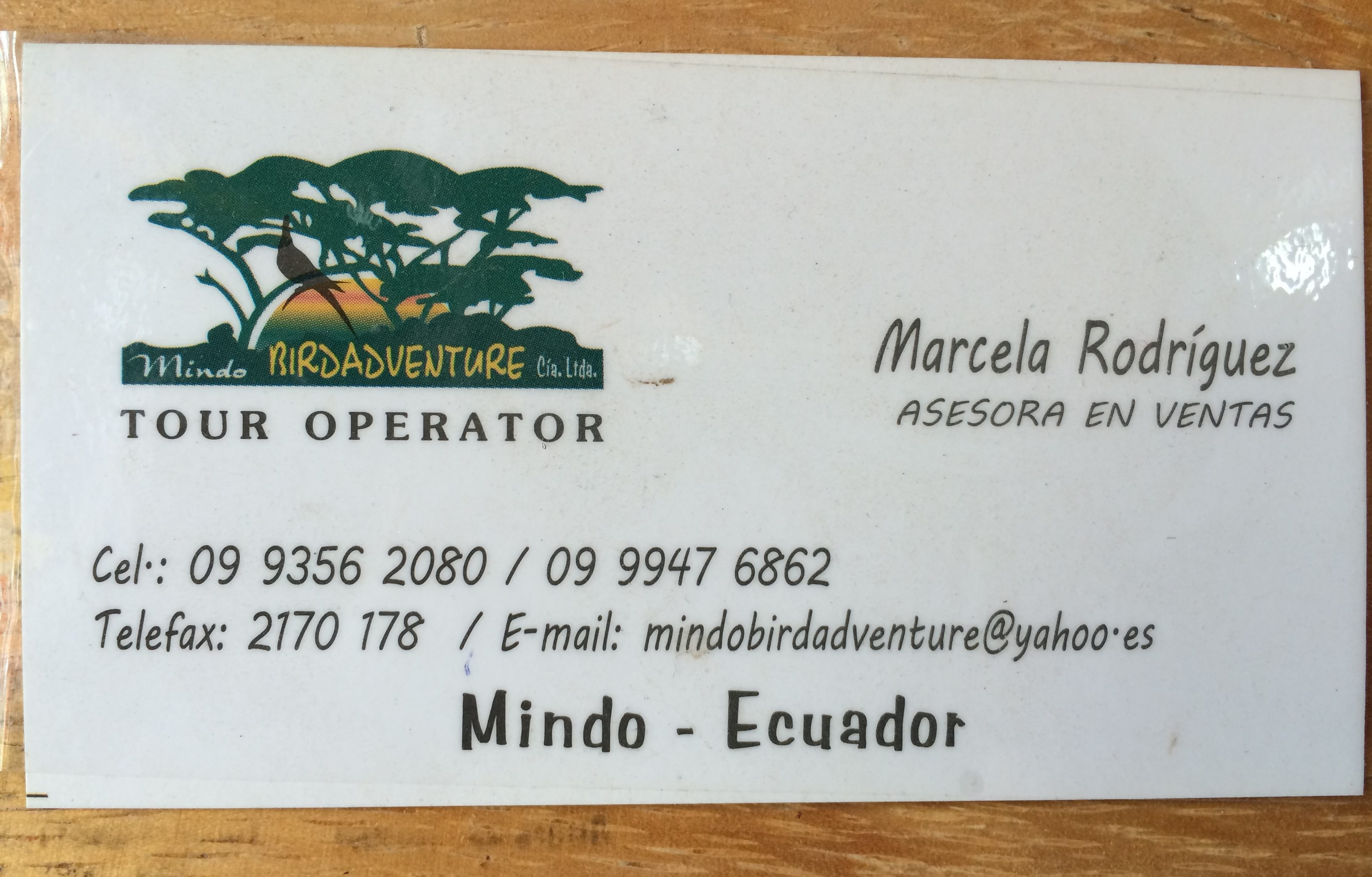 Mindo is the best place for a few tranquil days in Ecuador away from the beach, or for a long day trip from Quito. Check out this guide to the town! | #quito #mindo #ecuador #travel #things #to #do #guide #itinerary #south #america #mariposario #chocolate #cacao #factory #cloud #forest #daytrip #ecotourism