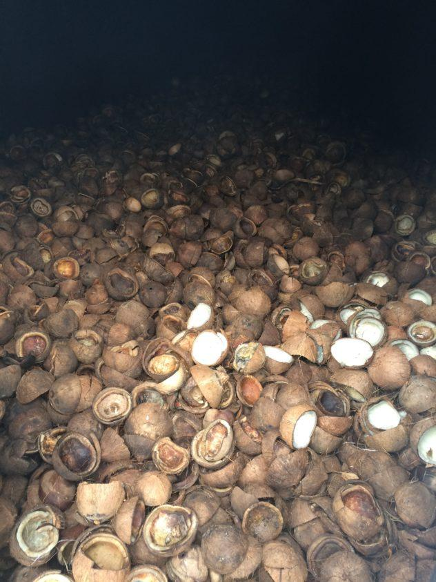 El Horno de Coco in Baracoa Cuba Coconuts Cooking