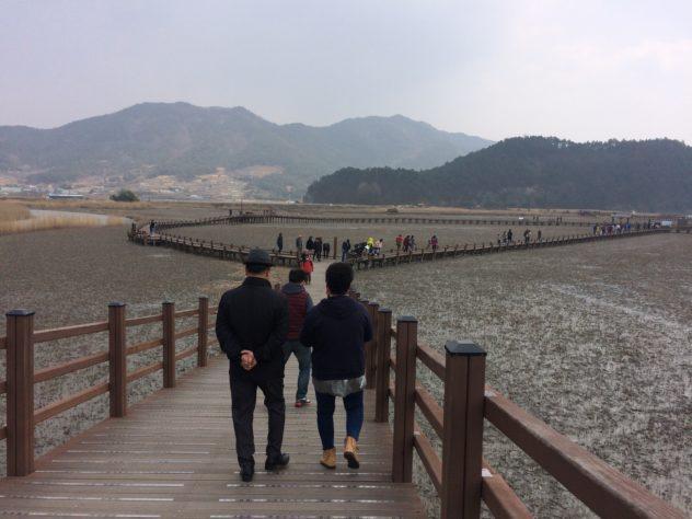 suncheon bay south korea