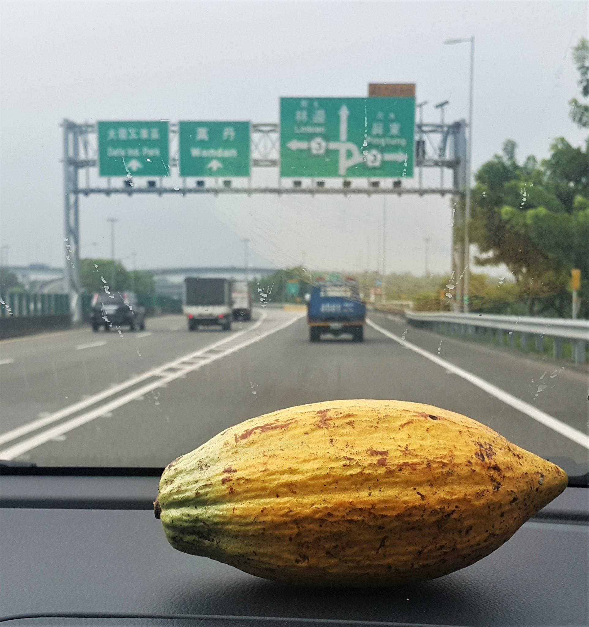 20171003 115742 - Cacao Plantations in Taiwan: Tree to Bar Chocolate on Formosa