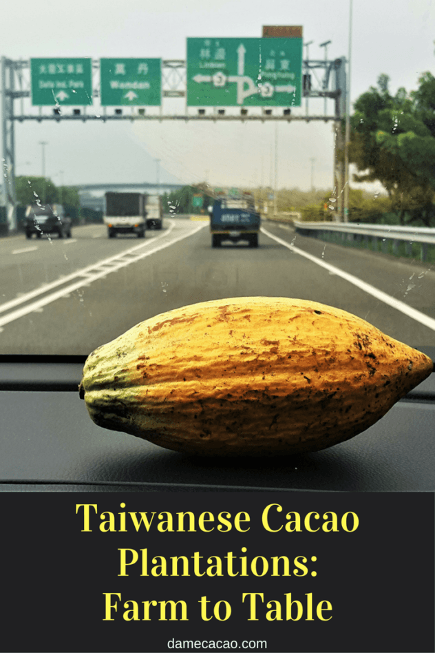 Looking for a unique trip in Taiwan? Then visit one of the country's many cacao plantations, where they grow the raw material for chcolate-- and you can even taste it!| #chocolate #chocolat #travel #guide #asia #southeast #taiwan #unique #activity #activities #foodie #daytrip #craft #cacao #cocoa #beans #plantation #pintung #kenting