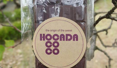 Hocada Coco South Korea Ecuador Chocolate pine nuts front of bar