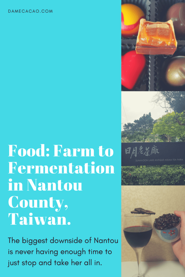 In Taiwan, Nantou is the number one stop for foodies looking to get off the beaten path, and inside you'll find 3 big places to stop in at, and 5 smaller ones, all of them feeling your #wanderlust.   #travel #taiwan #china #foodie #food #nantou #chooclate #cacao #wine #whiskey #distillery #tour #tea #plantation #activity #self #drive