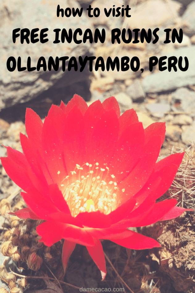 A guide to the almost-abandoned free ruins in Ollantaytambo, a town in Peru's Sacred Valley of the Incas. Beautiful and unpopulated? Sign me up! | #travel #peru #ollantaytambo #south #america #sacred #valley #ruins #unique #free #machu #picchu #incas #inca #things #experiences #to #do #archaeological #backpacking