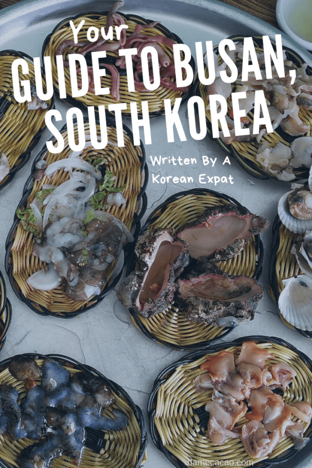 Busan guide pinterest pin 2