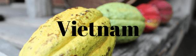 Vietnam 632x182 - Where I've Been