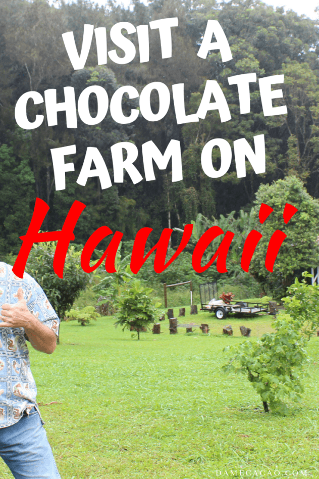 Hawaiian Chocolate: Big Island Cacao Farm Tours & Chocolate Shops pinterest pin with farm picture