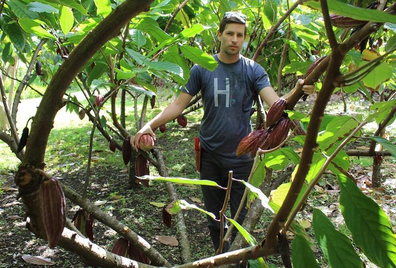 IMG 5232 - Hawaiian Chocolate & Cacao Culture