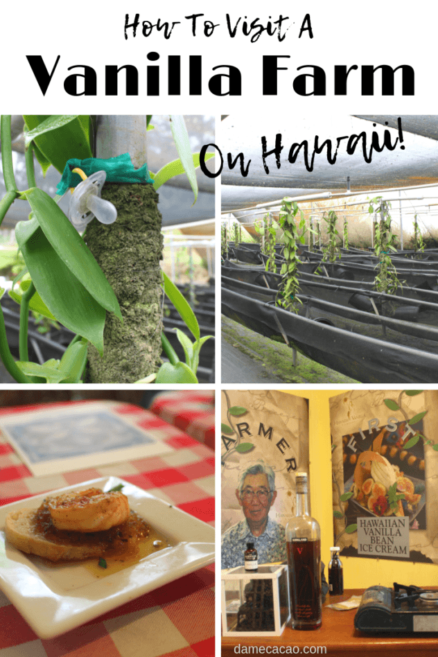 Hawaiian Vanilla Company Tour pinterest pin 2 with farm pictures