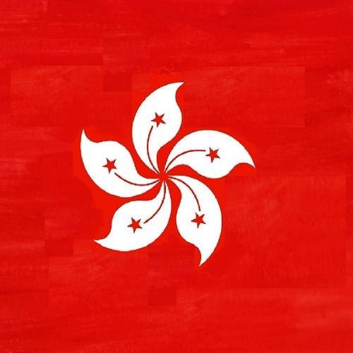 HK Flag square -