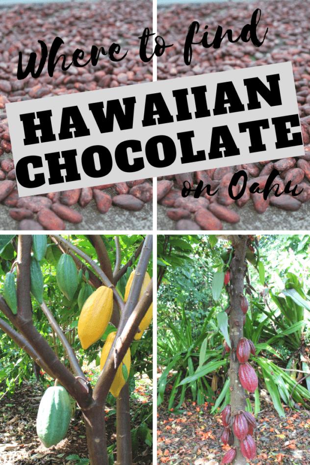 Hawaiian Chocolate: Big Island Cacao Farm Tours & Chocolate Shops pinterest pin 1 with various farm photos
