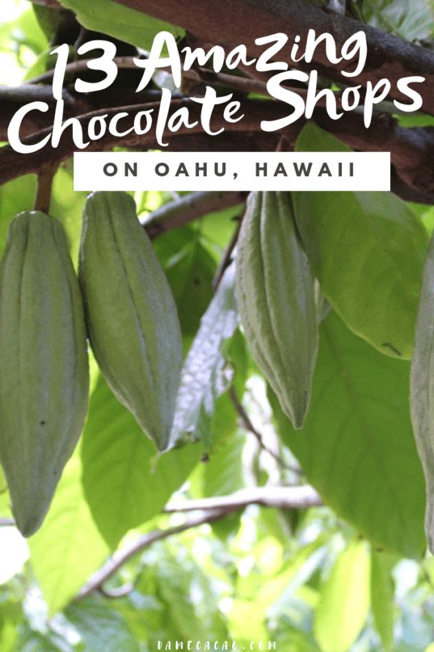 Hawaiian Chocolate: Big Island Cacao Farm Tours & Chocolate Shops pinterest pin 3 with various farm photos