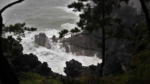 Jusangjeolli Lava Cliffs   #travel #korea #jeju #island #itinerary