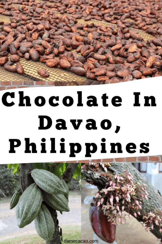 Davao Chocolate pinterest pin 2
