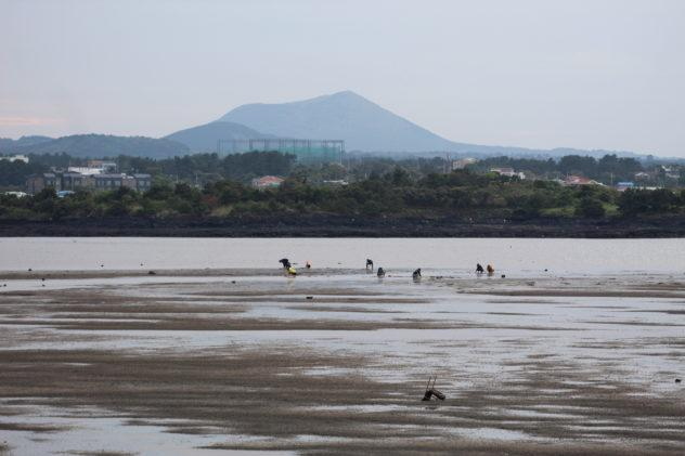 A view of Hallasan from the coast, visible even in fog. | #travel #korea #jeju #island #itinerary