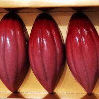 Presquile Japan Ruby Pink Chocolate Bonbons 1 200x200 - What Is Ruby Chocolate? How It's Made, Ruby Cocoa, & FAQ.