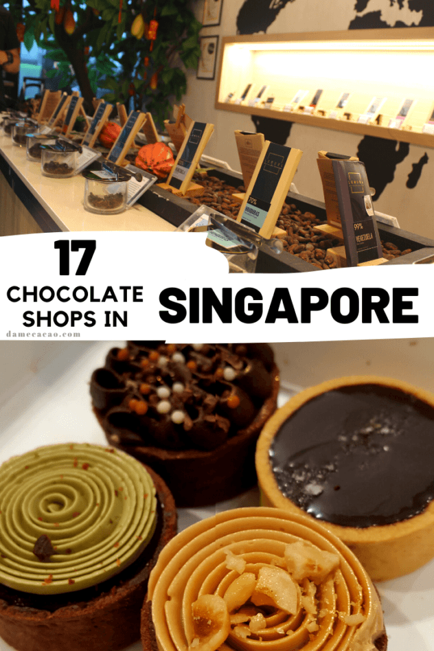 Singapore Chocolate guide pinterest pin 1